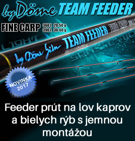 Team Feeder Fine Carp feeder prút