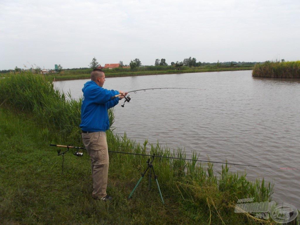 """91fef1ab2 Dáva to tušiť veľkú rybu, keď sa feeder prút takto ohýba...""""ide"""" po rybe od  rukoväte"""