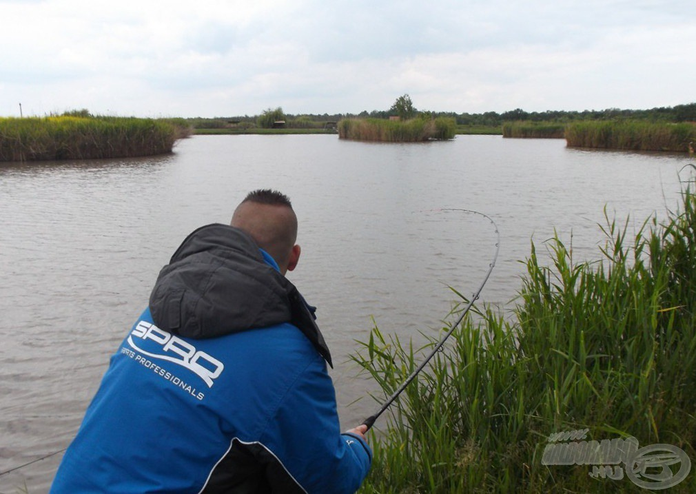 ee6edbd83 Môj prút bol v ten deň často takto prehnutý. V boji proti veľkým rybám mi  bol dokonalým partnerom.