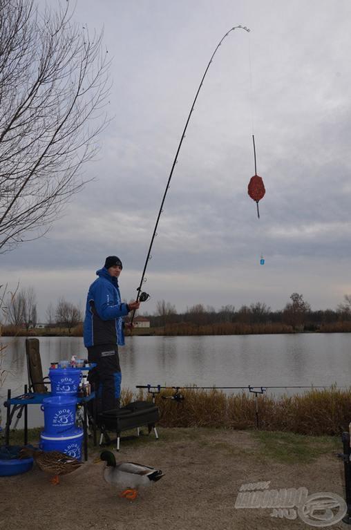 Feederový rybolov